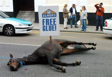 horse dead mgtow retire early