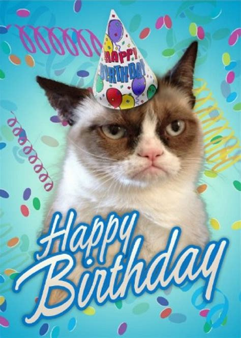 cat birthday 87 best cat birthday cards images on pinterest happy brithday birthday cards and birthdays