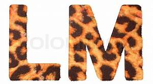 Leopard fur L and M letters isolated Stock Photo Colourbox