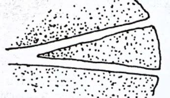 fluvial depositional landforms types  deltas pmf ias