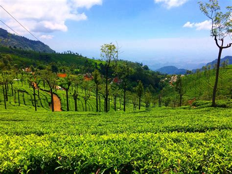 Wallpaper Jpg by Ooty Wallpaper 20 Hd Images And Gallery
