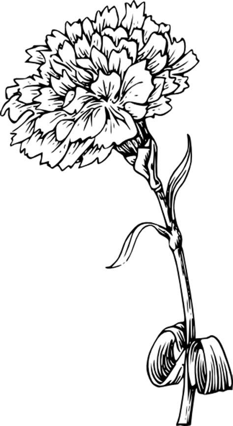 Carnation Flower 3 Clip Art at Clker.com - vector clip art
