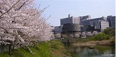 Osaka University : Suita (大阪大学) a.k.a. Handai (阪大 ...
