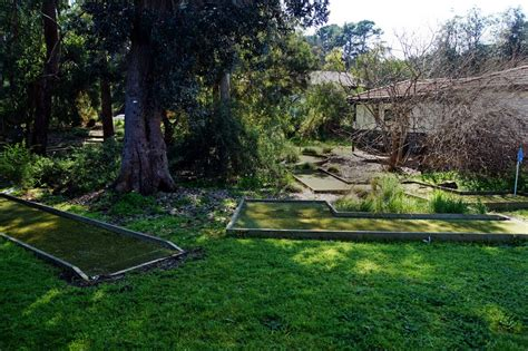 Photo Of Mini Golf At Lord Somers Camp (2010