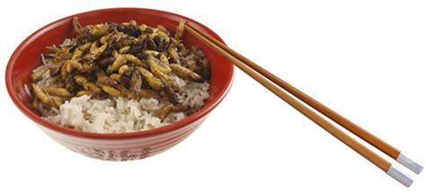 insectes cuisine manger des insectes à bars et restaurants à