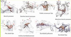 Best Chest Exercises For Mass - Training For Size