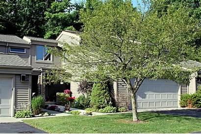 Ann Arbor Parkwood Condo Condos Estate Mi
