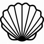 Seashell Shell Drawing Icon Beach Line Shellfish