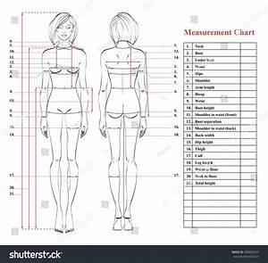 Body Figure Diagram