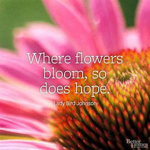 Flower Quotes | Bird, Flowers and Gardens