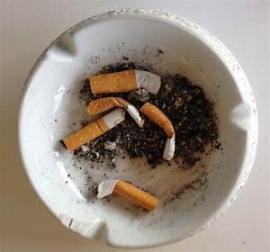 Wann Darf Vermieter Kündigen : wann kann ein vermieter einen rauchenden mieter k ndigen k nftig auch rauchverbot in den ~ Frokenaadalensverden.com Haus und Dekorationen