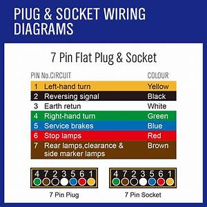 5 Pin Flat Trailer Wiring Diagram Boat