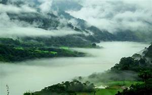Nature, Landscape, Mountain, Spring, Mist, Forest, River, Trees, India, Wallpapers, Hd, Desktop