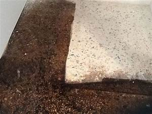 New stained terrazzo floor by weird science concrete for How to remove stains from terrazzo floors