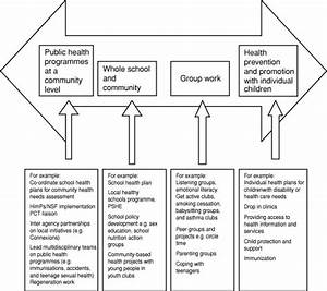 A Continuum For Public Health Practice In School Nursing  Department Of