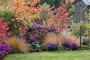 Plantes Vivaces Pour Massif : cr er un beau parterre de fleurs ou massif de vivace en 7 ~ Premium-room.com Idées de Décoration
