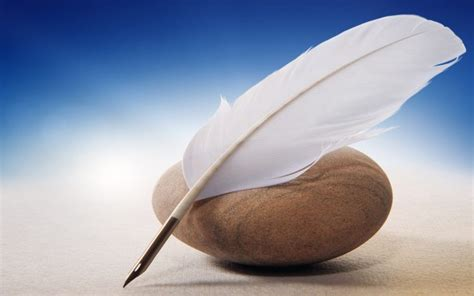 quills feathers stones hd wallpapers desktop