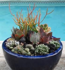 Tabletop Rock Garden 70 indoor and outdoor succulent garden ideas shelterness