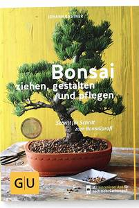 Haus Kaufen Schritt Für Schritt : bonsai schritt f r schritt zum bonsaiprofi bei oyaki ~ Lizthompson.info Haus und Dekorationen