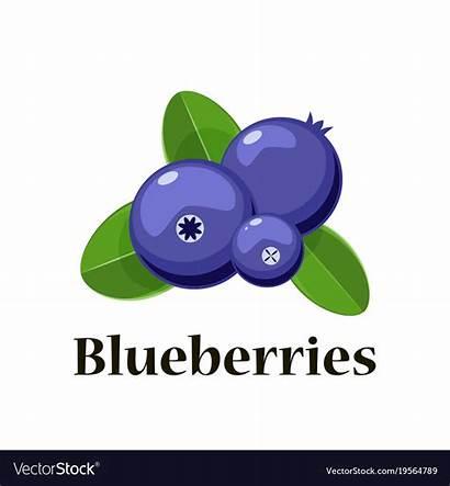 Cartoon Blueberries Pngio Transparent