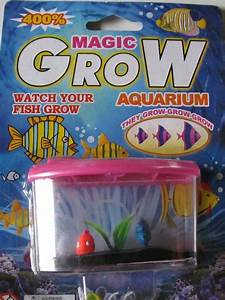 Other Educational Toys