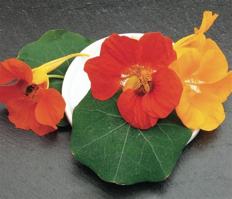 cuisine parme catalogue marius auda fleurs comestibles