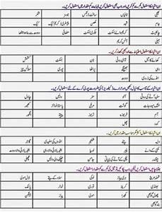 Diabetes Diet Chart In Urdu