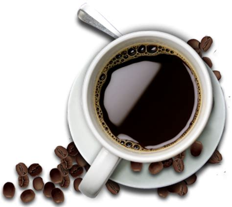 Just 4 days ago, i made coffee by adding the ground coffee powder (it is quite fine) to boiling water, allowed it to cool, sprinkled some cold water. Restaurant | Accommodation & Restaurant Bonaca Podaca