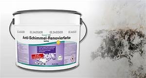 Mittel Gegen Wandschimmel : schimmel vorbeugen kronen anti schimmel renovierfarbe jaeger ~ Whattoseeinmadrid.com Haus und Dekorationen