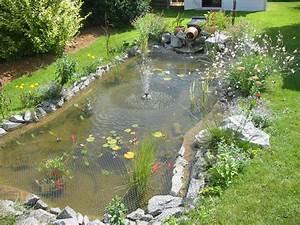 amenagement bassin poisson on decoration d interieur With amenagement jardin avec bassin