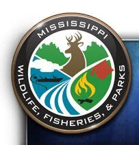 Ms Dept Wildlife Fisheries Boat Registration by Best 218 976 2 Crooked Letter Crooked Letter Images On