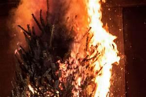 Burning, Christmas, Tree, 2, Men, Stabbed, At, Christmas, Tree, Burning, In, Arizona, Lunch, Break, Angler