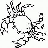 Crab Coloring Popular sketch template