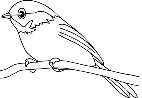 sketsa gambar burung hantumerakgarudaelang gambar