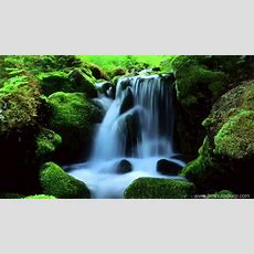 Mountain Stream Nature Sounds (10 Hours) Relax, Meditate, Sleep Youtube