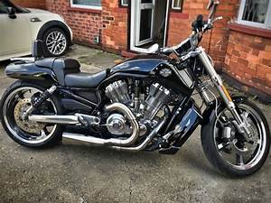 Harley V Rod : harley v rod harley davidson v rod muscle 2016 squir harley davidson v rod muscle wallpapers ~ Maxctalentgroup.com Avis de Voitures