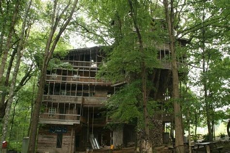 Front View-picture Of The Minister's Tree House