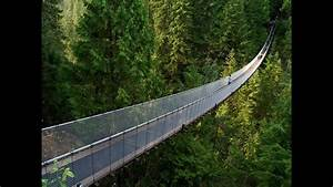 Capilano Suspension Bridge  U0026 Cliffwalk