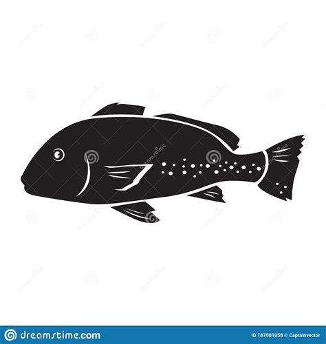vector grouper giant decorative fish