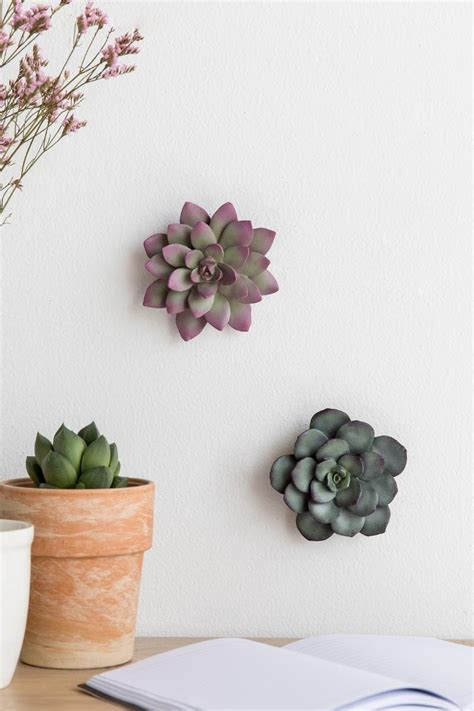 Small Succulent Wall Decor Set  Francesca's. Harley Davidson Living Room. Living Room Wall Designs. Modern Living Room Furniture Designs. Purple And Yellow Living Room. Rug Sizes Living Room. Wood Beams In Living Room. Warm Living Room Ideas. Living Room False Ceiling Ideas