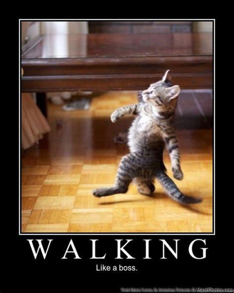 walking   boss  house incoming search termshindi