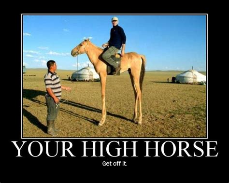 High Horse Meme - it is okay to want things just don t try and justify them