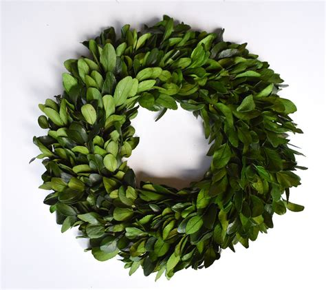 preserved laurel wreath  home decorative accents