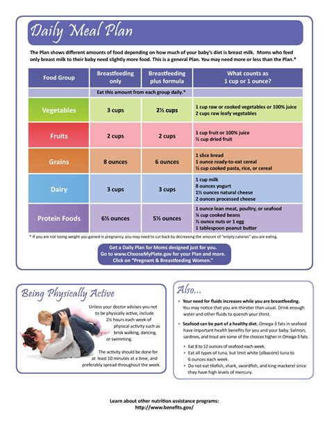 Breastfeeding Moms Daily Meal Plan See Link Meal