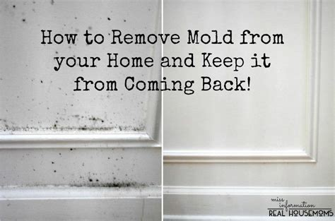 remove mold   home     coming