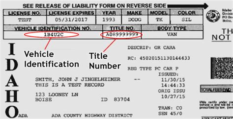 Florida Vessel Registration Search by Motor Vehicle Title And Registration Records Search