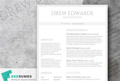 Clean Resume Layout by Free Classic Resume Templates