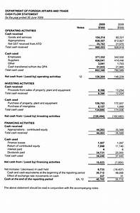 DFAT Annual Report 2008-2009 : Financial Statements ...