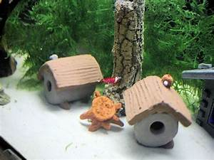 Aquarium Deko Ideen : garnelen r hre wumba h hlen deko aquarium ~ Lizthompson.info Haus und Dekorationen