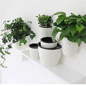 Pflanzen Zum Aufhängen : blau blumenk sten bert pfe und weitere pflanzen ~ Michelbontemps.com Haus und Dekorationen